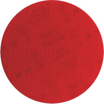 Diablo SandNet 5 In. 100 Grit Sanding Disc with Connection Pad (10-Pack)
